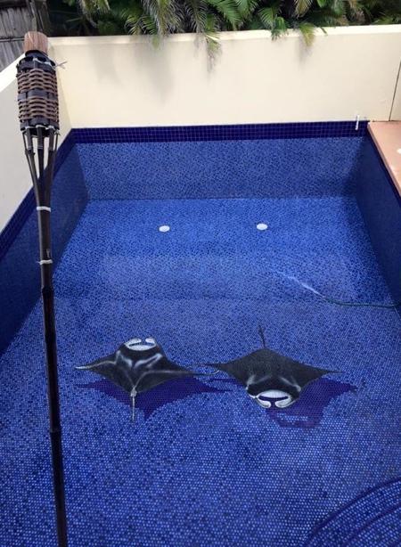 Robert Vogland 3D Swimming Pool Art