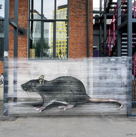 Cellophane Graffiti
