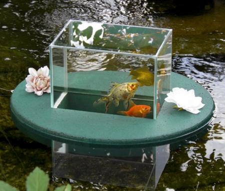 Flying Aquarium
