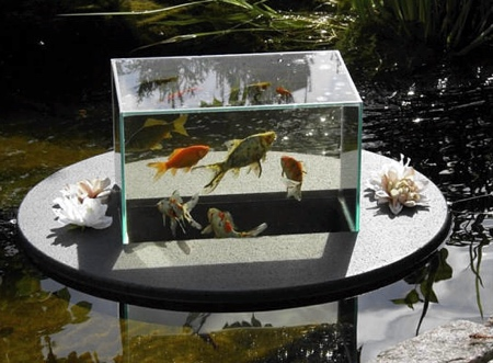 Pond Aquarium