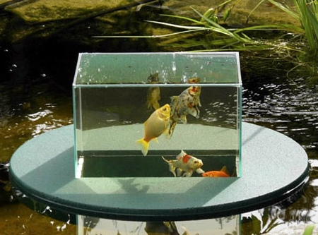 Float Aquarium
