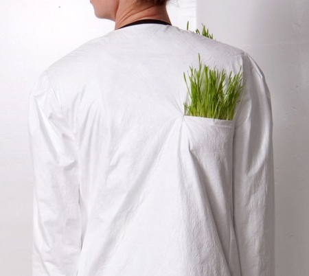 Plant Raincoat