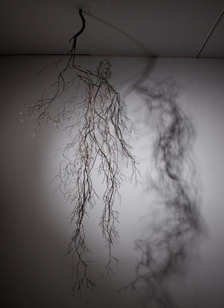 Root Sculptures