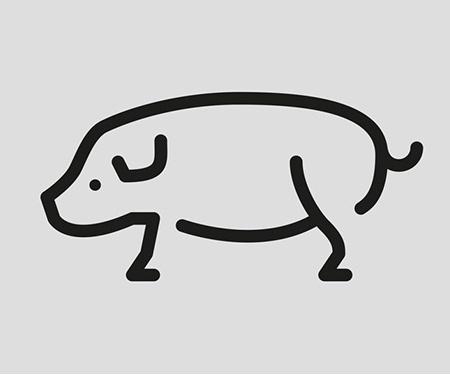 Animal Graphic Design