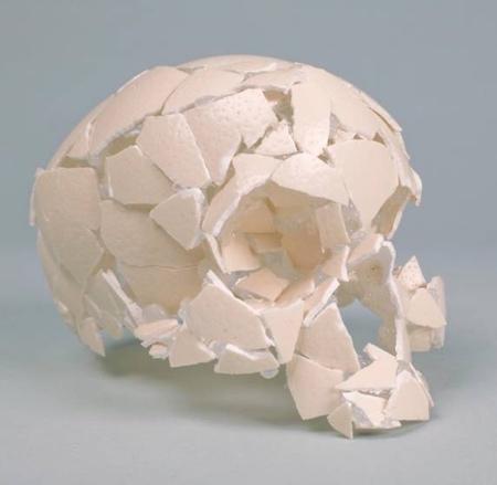 Eggshell Human Skull