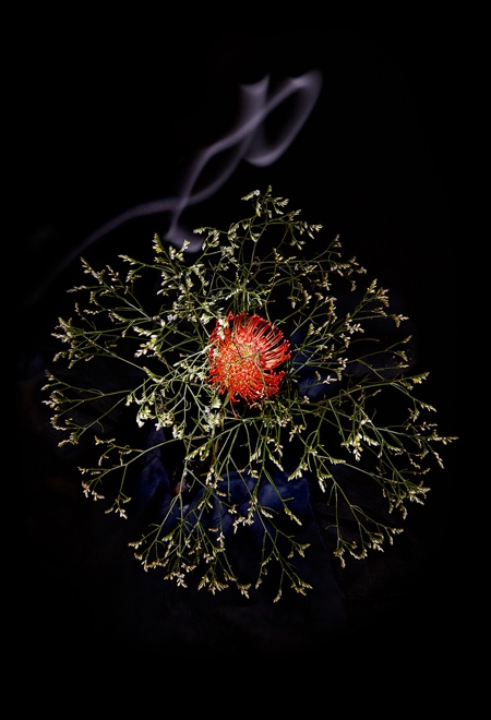 Flowers Firework