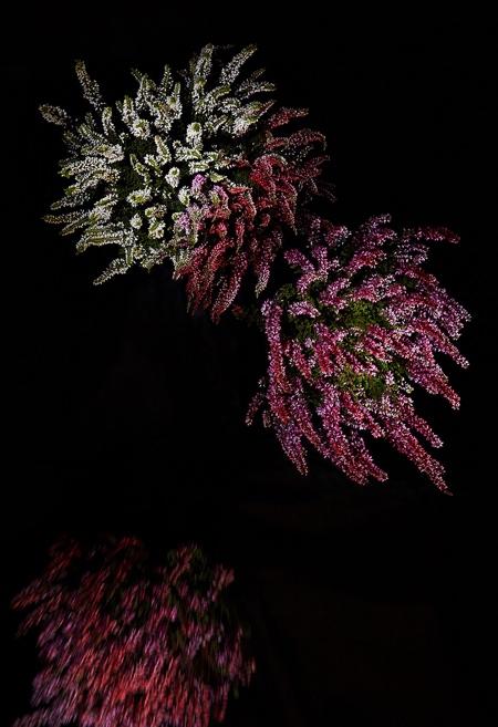 Sabrina Rynas Flowerworks