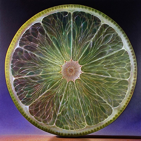Transparent Fruit Painting