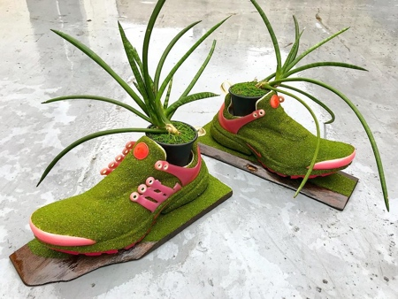 Nike Shoes Trees