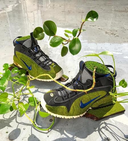 Nike Shoe Trees