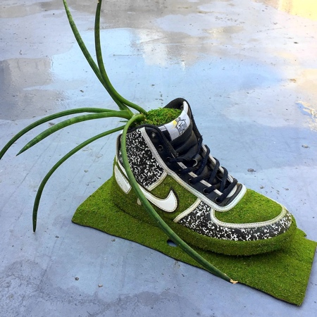 Plants in Nike Shoes