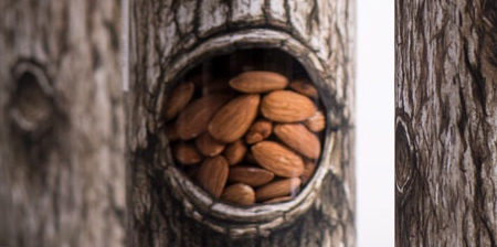 Tree Nuts Packaging