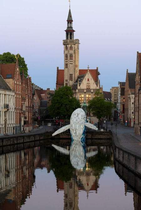 The Bruges Whale