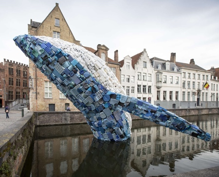 Whale in Bruges