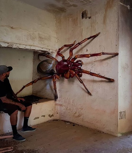 3D Insects Street Art