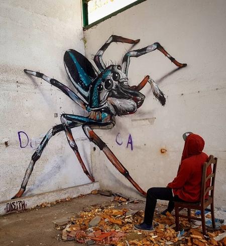 Odeith 3D Bugs