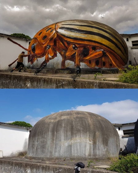 Odeith 3D Insects