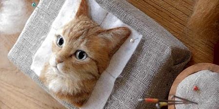 3D Cat Portraits
