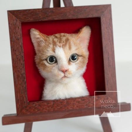 3D Realistic Cat Portraits