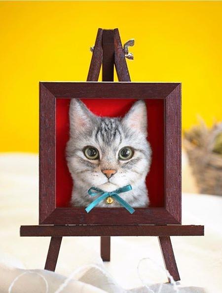 Realistic Cat Portrait
