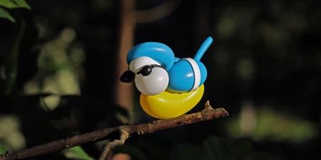 Balloon Birds