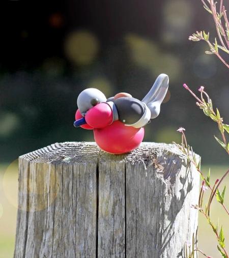 T James Cook Balloon Bird