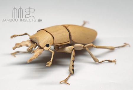 Bamboo Insect