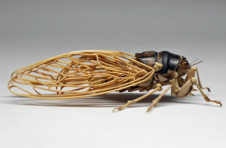 Insect Made of Bamboo