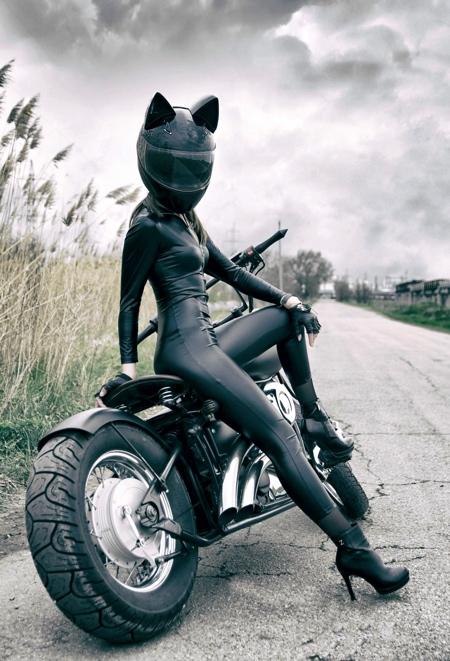 Cat Motorcycle Helmets