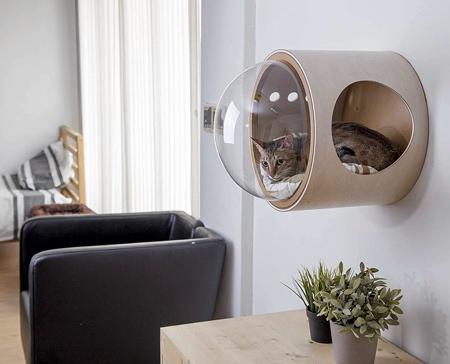 Cat Spaceship