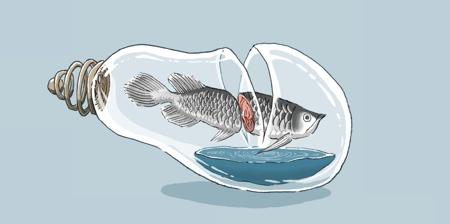 Food Art by Maruimichi