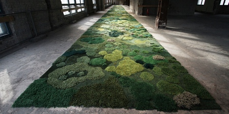 Forest Rugs