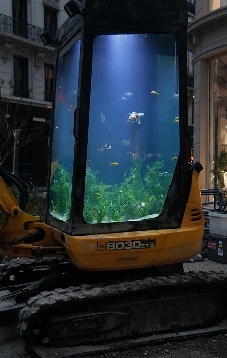 Digger Aquarium