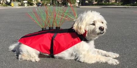 Anti-Coyote Dog Vest