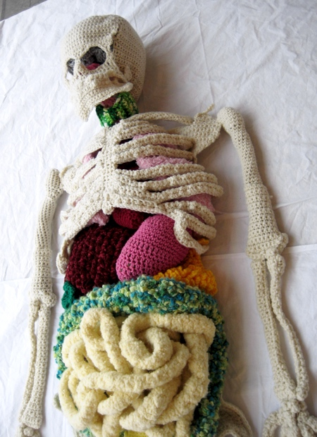 Shanell Papp Human Skeleton