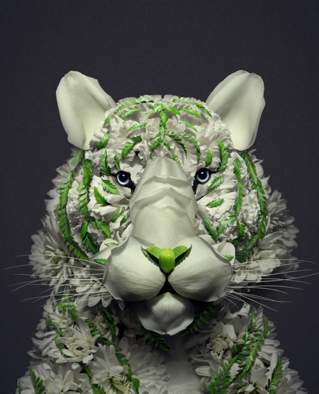 Animals Made of Flowers