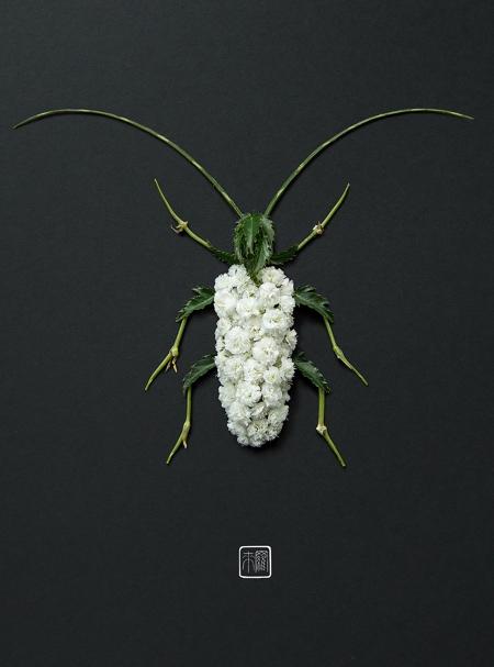 Raku Inoue Flower