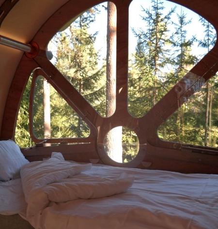 Tree Tents Fuselage