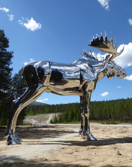 Mirrored Moose
