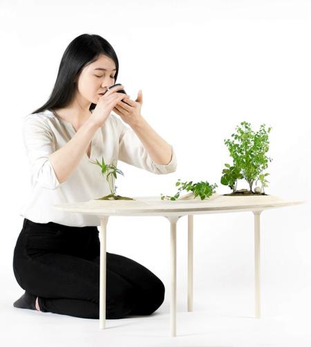 Plants Table