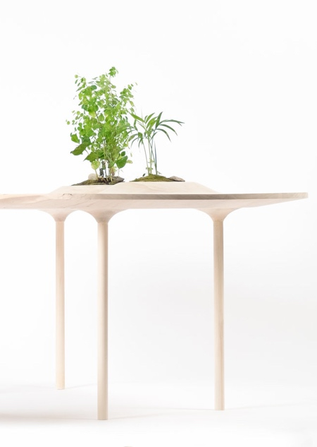 Wooyoo Table with Plants