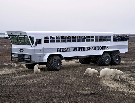 Polar Hotel on Wheels
