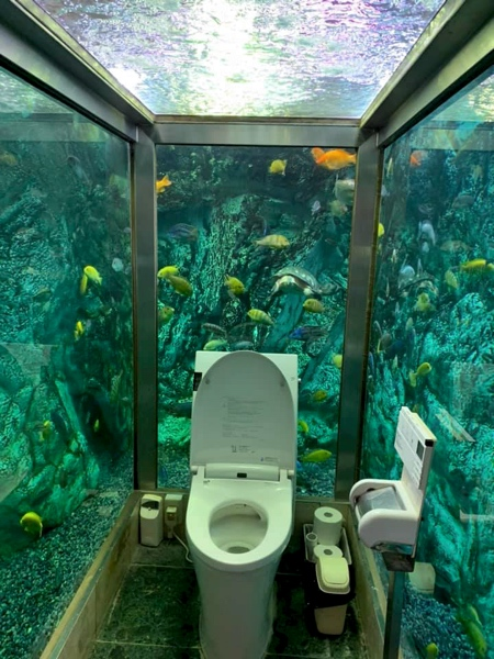 Toilet in Aquarium