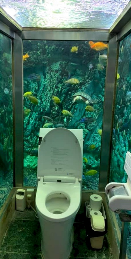 Japanese Aquarium Toilet