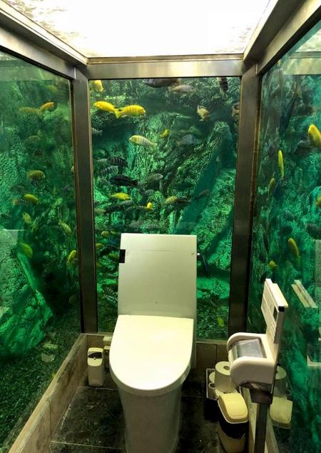 Hipopo Papa Aquarium Toilet