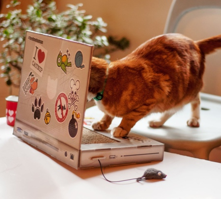 Cat Laptop Scratching Post
