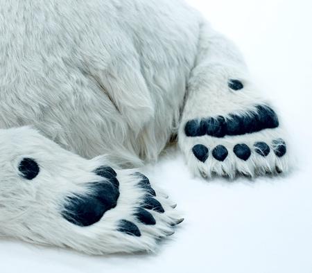 Realistic Polar Bear Toy