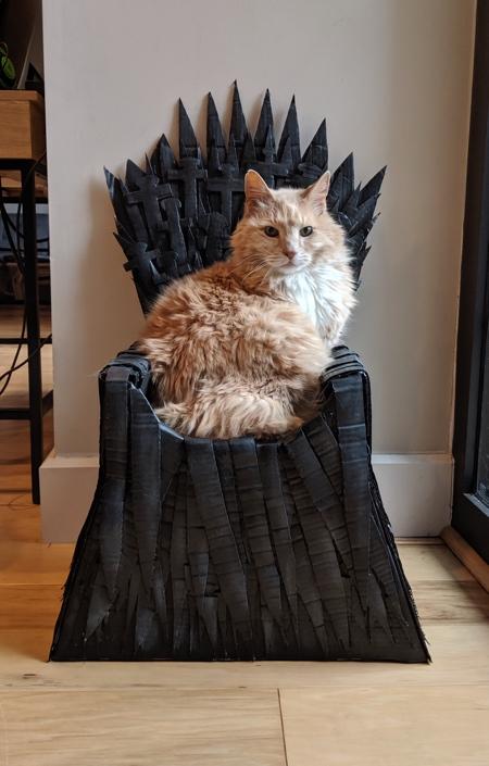 Cat Iron Throne