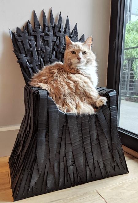 Cat Game of Thrones