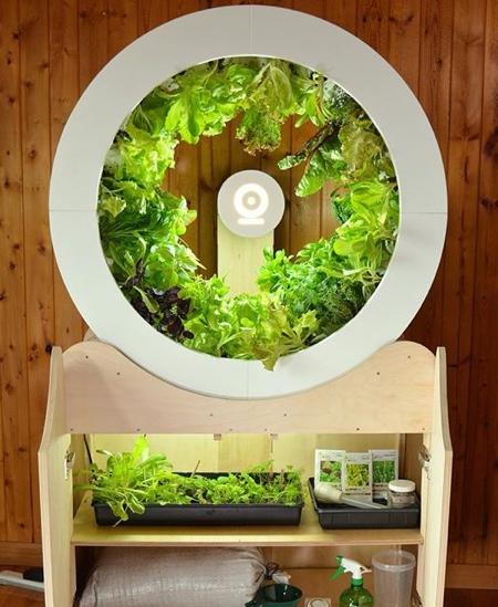 Tech Garden